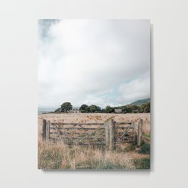 Wheat field in Scotland Metal Print