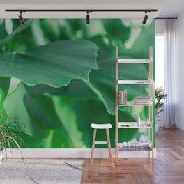 Ginkgo biloba leaves Wall Mural