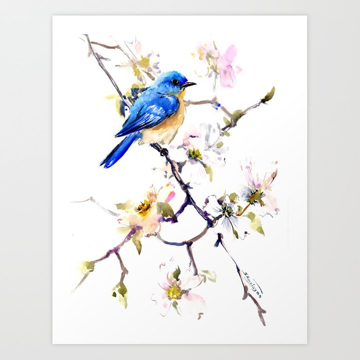 Bluebird and Dogwood, bird and flowers spring colors spring bird songbird design Kunstdrucke