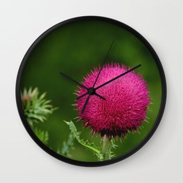 Prickly beauty Wall Clock