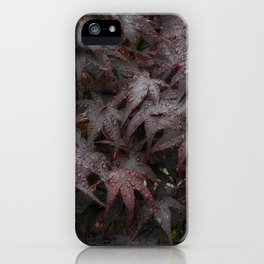 Water droplets on Acer leaves iPhone Case