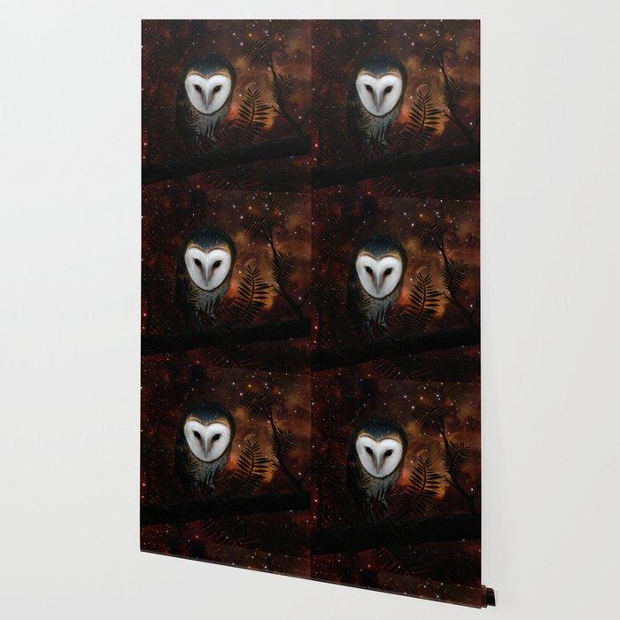 Barn owl at night Wallpaper