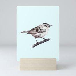 Rock wren - centred Mini Art Print
