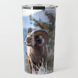Ram male bighorn sheep standing on the edge of a cliff with frosty winter grasses. Travel Mug