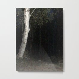 Through a Wood Darkly Metal Print
