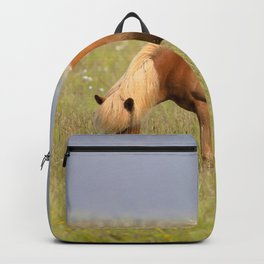 Watercolor Horse 26, Icelandic Pony, Höfn, Iceland, Grazing the Grasses of Love Backpack