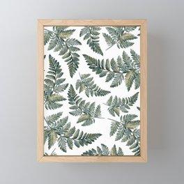 Fern Leaf Patterns  Framed Mini Art Print
