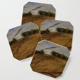 Amber Waves Coaster