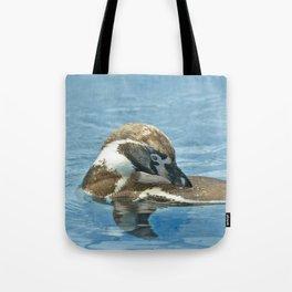 Humboldt penguin (Spheniscus humboldti) Tote Bag