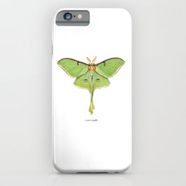 Luna Moth (Actias luna) II iPhone Case