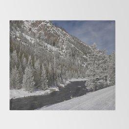 Carol Highsmith Snow Covered Conifers Throw Blanket
