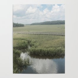 Peaceful Marshy Meadow Poster