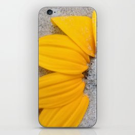 Sunflower in the Sand iPhone Skin