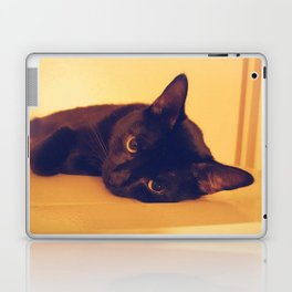 Laid Back Laptop & iPad Skin