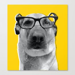 Warby Barker Canvas Print