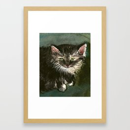 Farm Cat Looking Up Framed Art Print