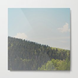 above the tree line in the Santa Fe National Forrest Metal Print