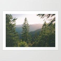 Forest XV Art Print