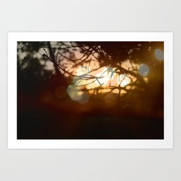 Invigorating Lights II Art Print