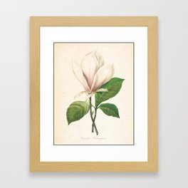 Flower Color Pencil Hand Drawing Framed Art Print