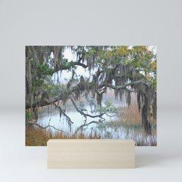 Daniel Island Marsh 1 Mini Art Print