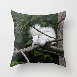 Sleeping Lily the beautiful White Albino Squirrel Throw Pillow