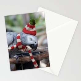 Holiday Parrot Stationery Cards