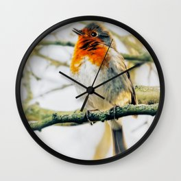 Soft fluffy Robin Wall Clock