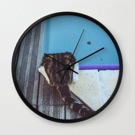 Curiosity does not always kill the cat Wall Clock