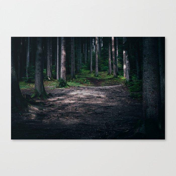 Dream Woods Canvas Print