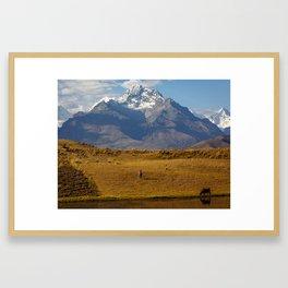 Andean II Framed Art Print
