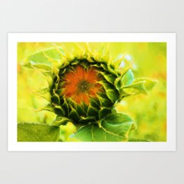 About to Bloom Art Print
