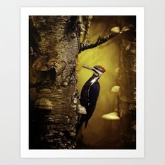 Pileated Woodpecker Forest Sunrise Art Print
