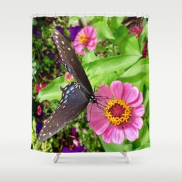 Butterfly on Pink Zinnia Shower Curtain