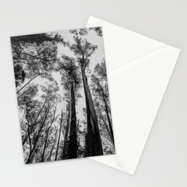 Fog Top Stationery Cards