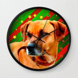 Brown Dog stars Red Yellow Green Christmas Wall Clock