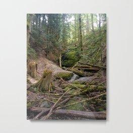 Dried Waterfalls Metal Print