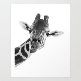 Giraffe Portrait // Grey Wild Animal Cute Zoo Safari Madagascar Wildlife Nursery Decor Ideas Art Print