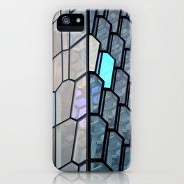 Harpa 10 iPhone Case