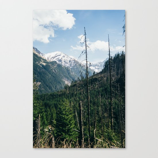 Mountains and Forest Landscape Canvas Print