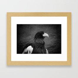 Presence of Peace Framed Art Print