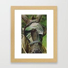 dp2 Framed Art Print