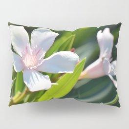 Olender 143 Pillow Sham