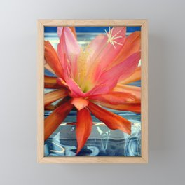 The Water Lily Cactus Framed Mini Art Print