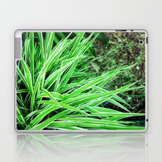 LongLeaves Laptop & iPad Skin