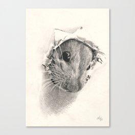 Pickaboo! Canvas Print