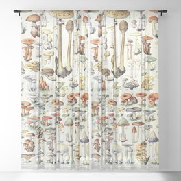 Adolphe Millot - Champignons B - French vintage poster Sheer Curtain