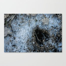 Icy Footprints Canvas Print