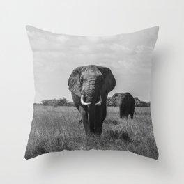 The Elephants (Black and White) Throw Pillow