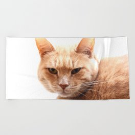 Red cat watching Beach Towel